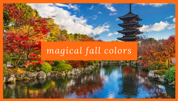 magical-fall-foliage.png